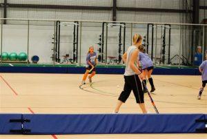 Blue padding for floor hockey.