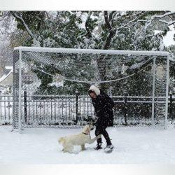 Model #PSGE2CUSOMBB. Aluminum custom size backyard soccer goal.