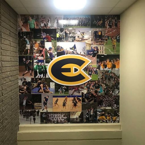 Vinyl wall wrap picture mural with dimensional logo.
