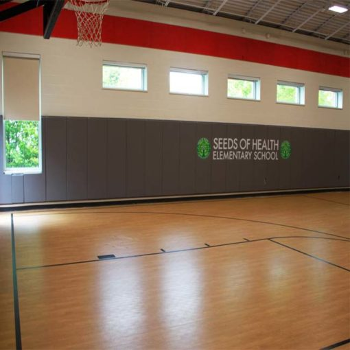 Model #GS72. Wall mount basketball hoop for gym. Custom logo wall pads.